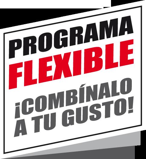 programa flexible