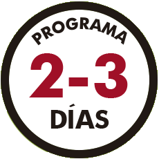 PROGRAMA 2-3 DIAS