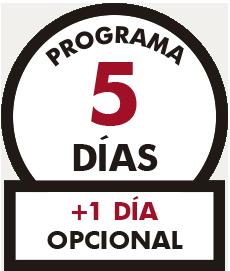 PROGRAMA 5 DIAS