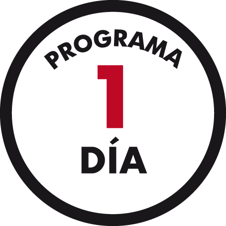 programa 1 dia